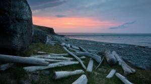 Norðurfjörður arnar 1